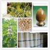 白藓皮提取物 比例提取 厂家现货包邮 价格实惠 植物提取物